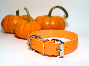 Pumpkin Orange Biothane Dog Collar - 1 inch (25mm) wide