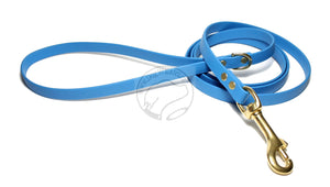 Caribbean Blue Small Dog Leash