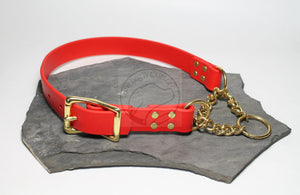 "Biothane Chain Martingale Dog Collar - Solid Brass Hardware -  1"" (25mm) wide"