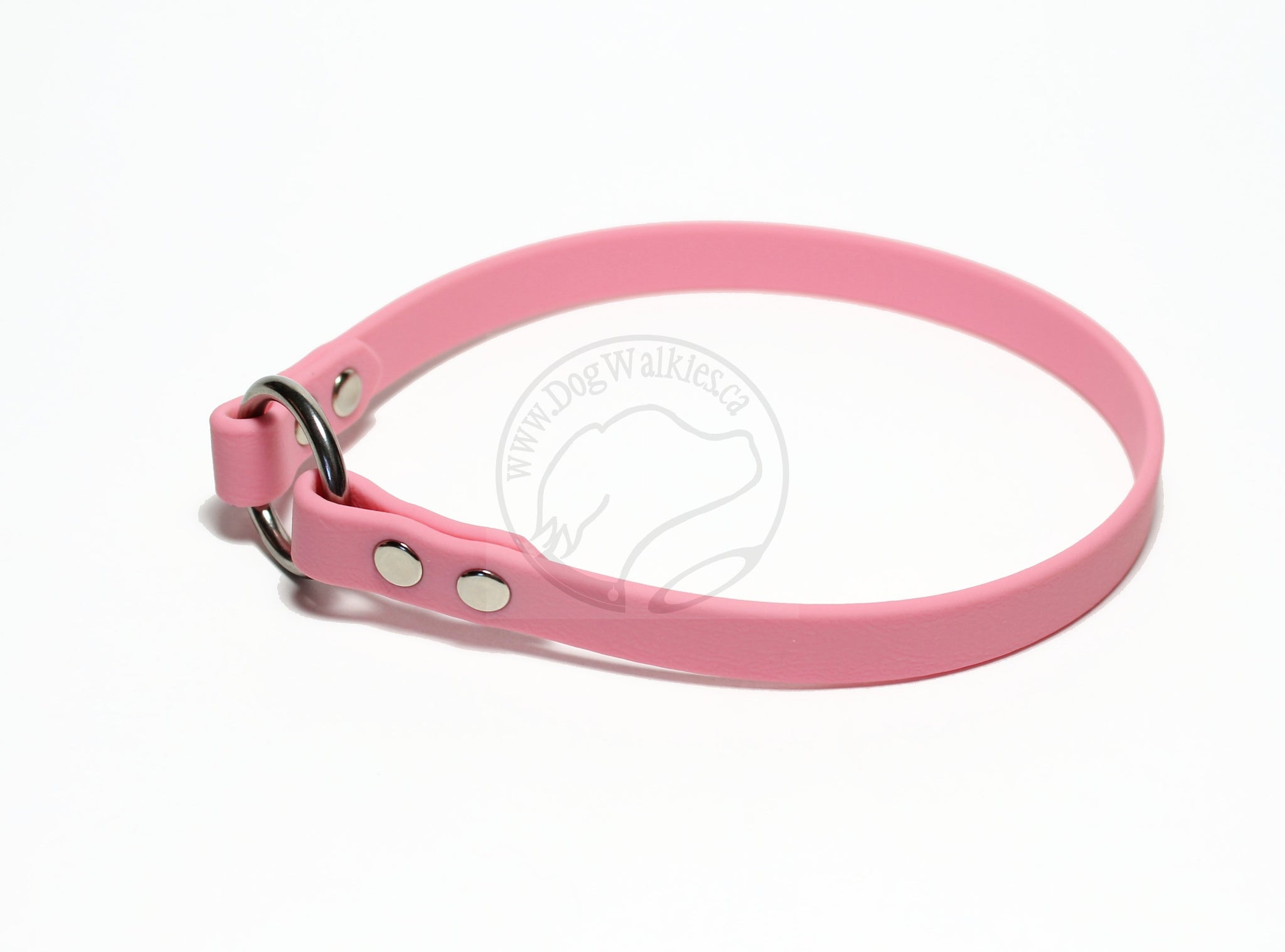 "Simple Tag Dog Collar in Genuine Biothane - 12mm (1/2"") width"