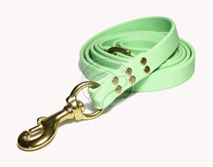 Pastel Mint Green Biothane Large Dog Leash