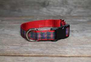 Cameron of Erracht tartan - dog collar