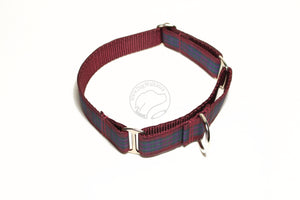 Pride of Scotland Autumn tartan - dog collar