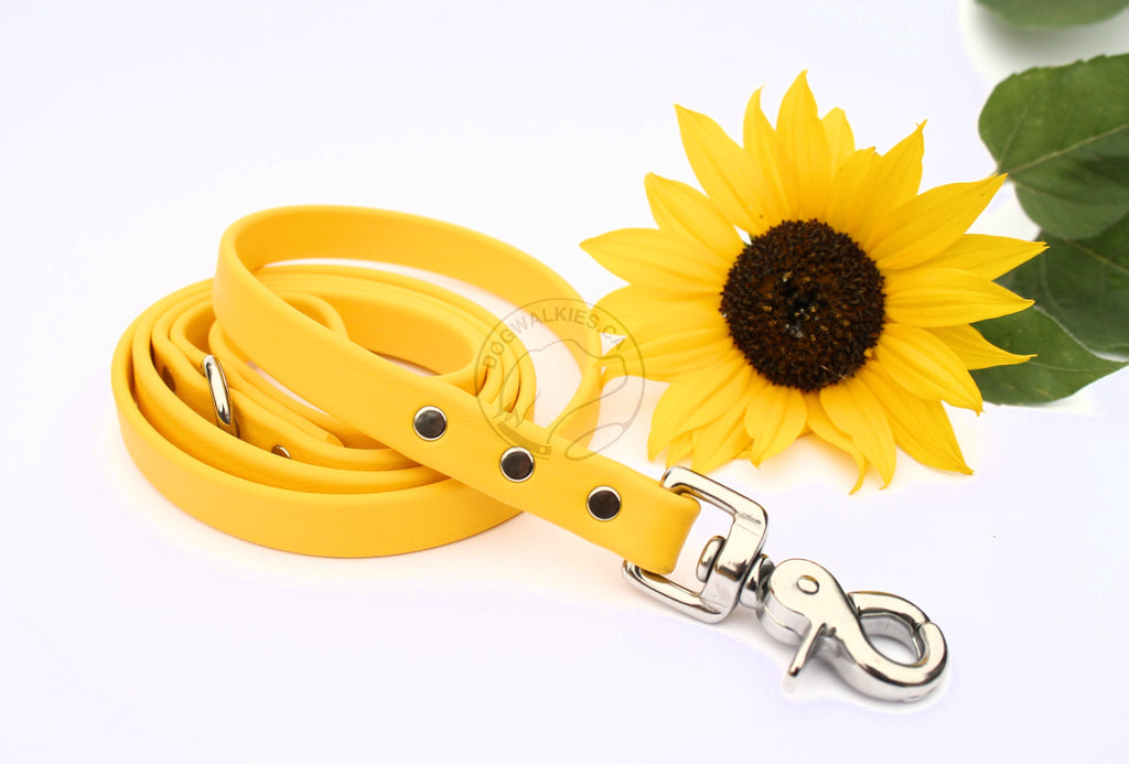 Lighter Weight Waterproof Tracking Recall Long Line - leash for small dog or cats