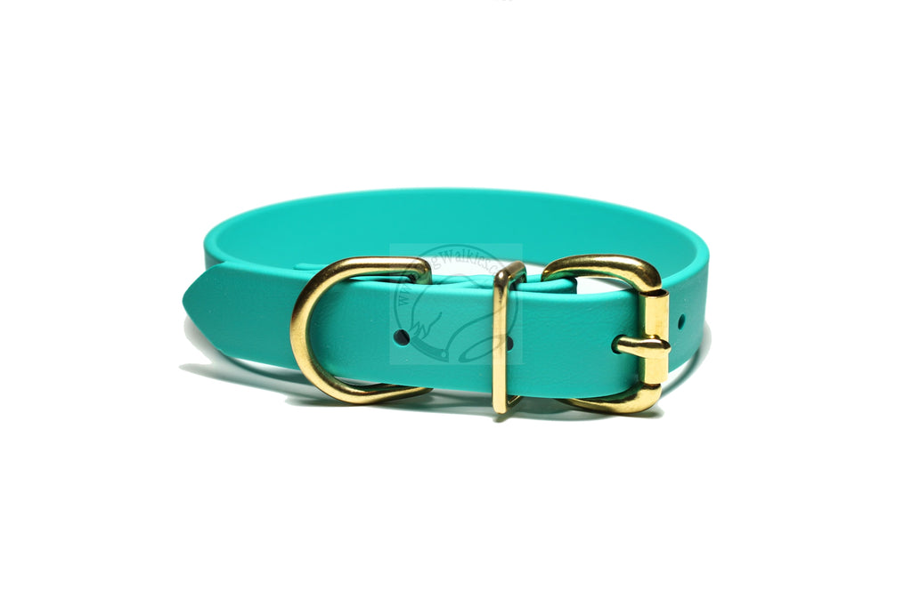 Teal Biothane Dog Collar - 1 inch (25mm) wide