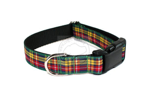 Buchanan clan tartan - dog collar