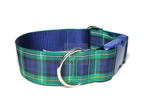 Campbell clan tartan - dog collar
