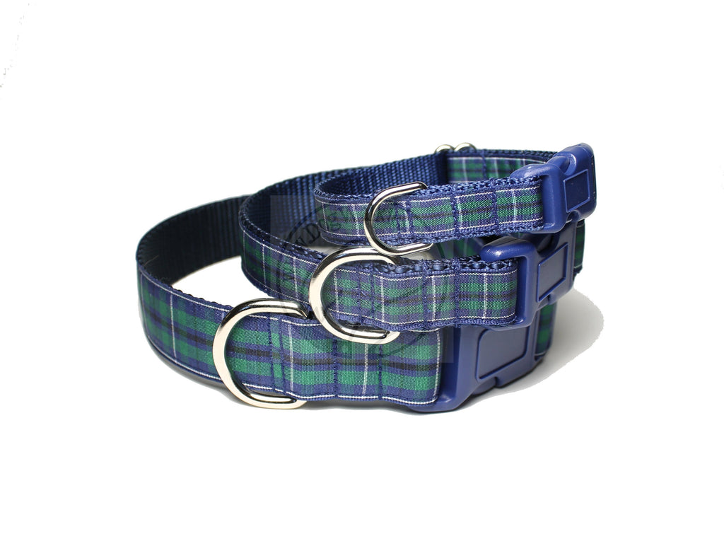 Modern Douglas clan tartan - dog collar