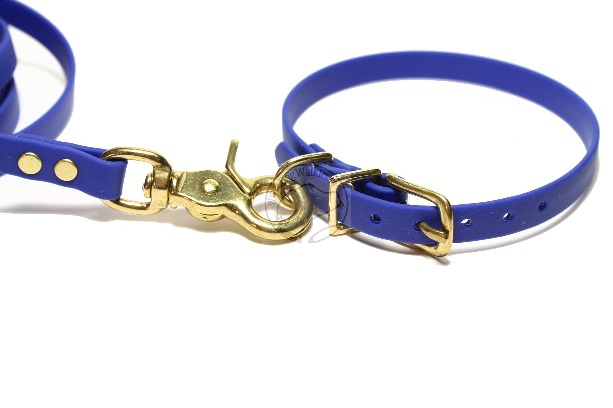 Royal Blue Small Dog Leash
