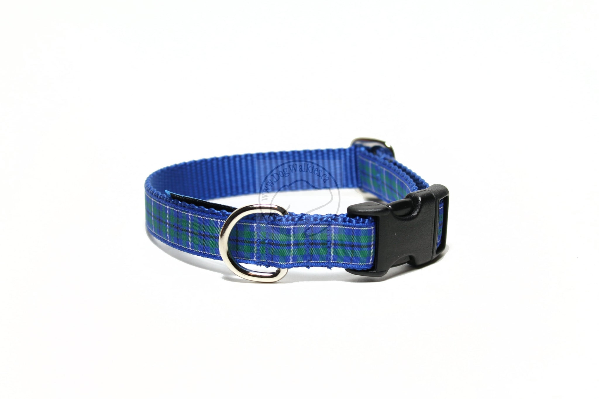 Ancient Douglas clan tartan - dog collar
