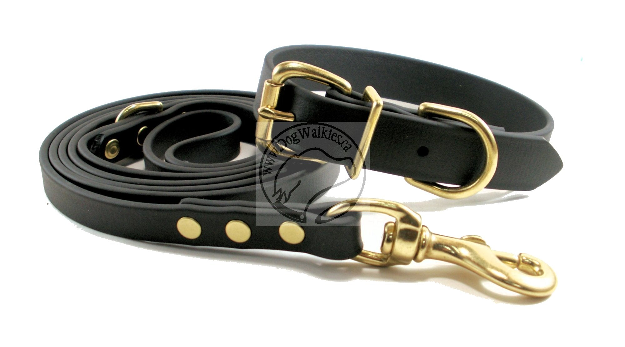 Jet Black Biothane Dog Leash