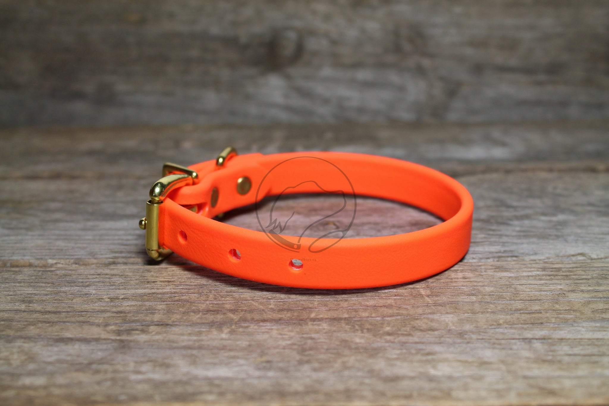 "Neon Blaze Orange Biothane Dog Collar - 5/8""(16mm) wide"