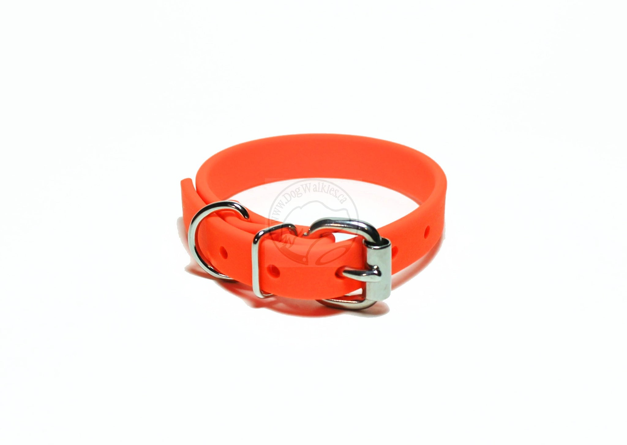 "neon orange Biothane dog collar in 5/8"" stainless steel"