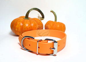 *NEW COLOUR* Pumpkin Orange Biothane Dog Collar - 1 inch (25mm) wide