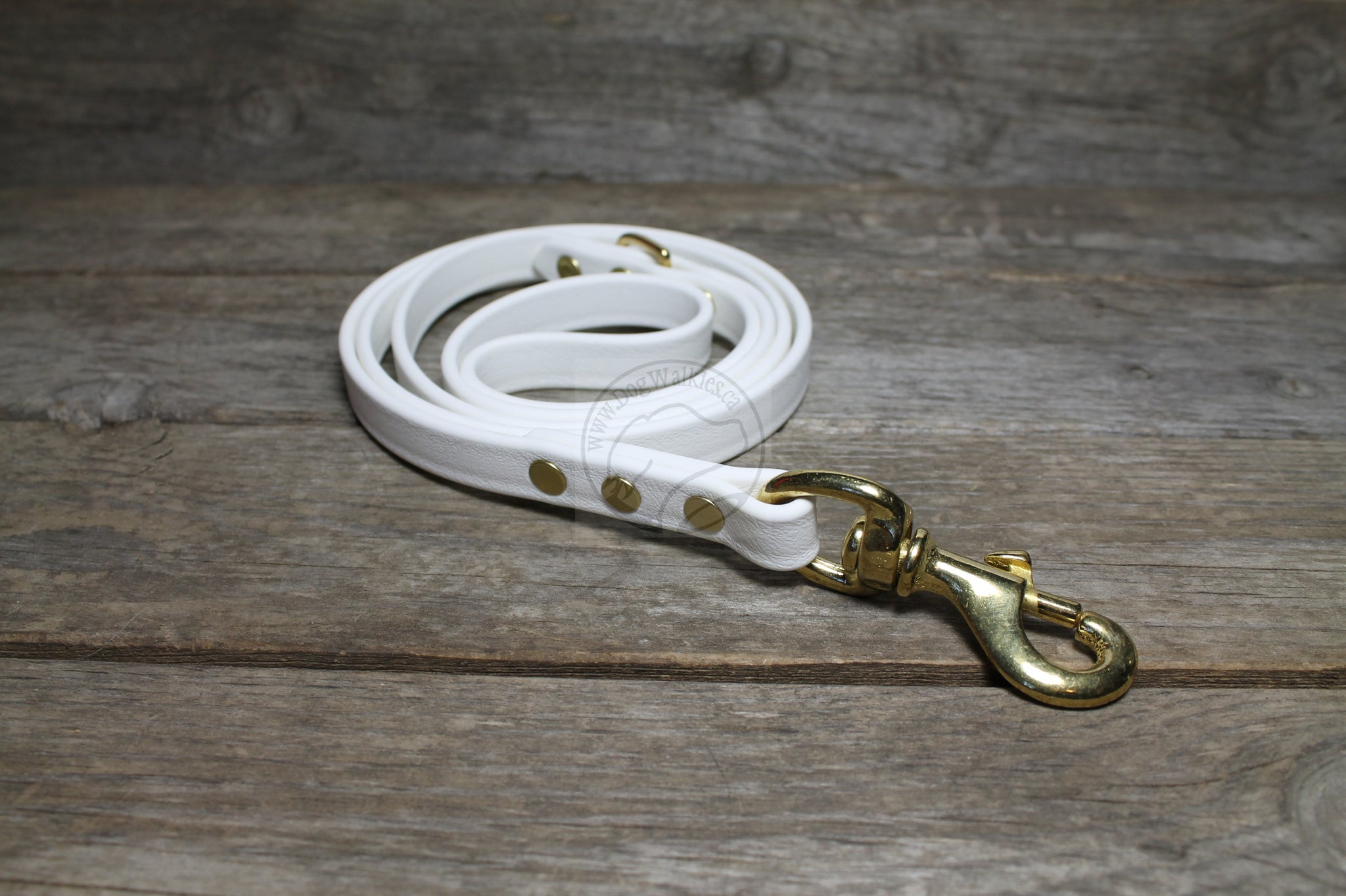 Snow White Biothane Dog Leash