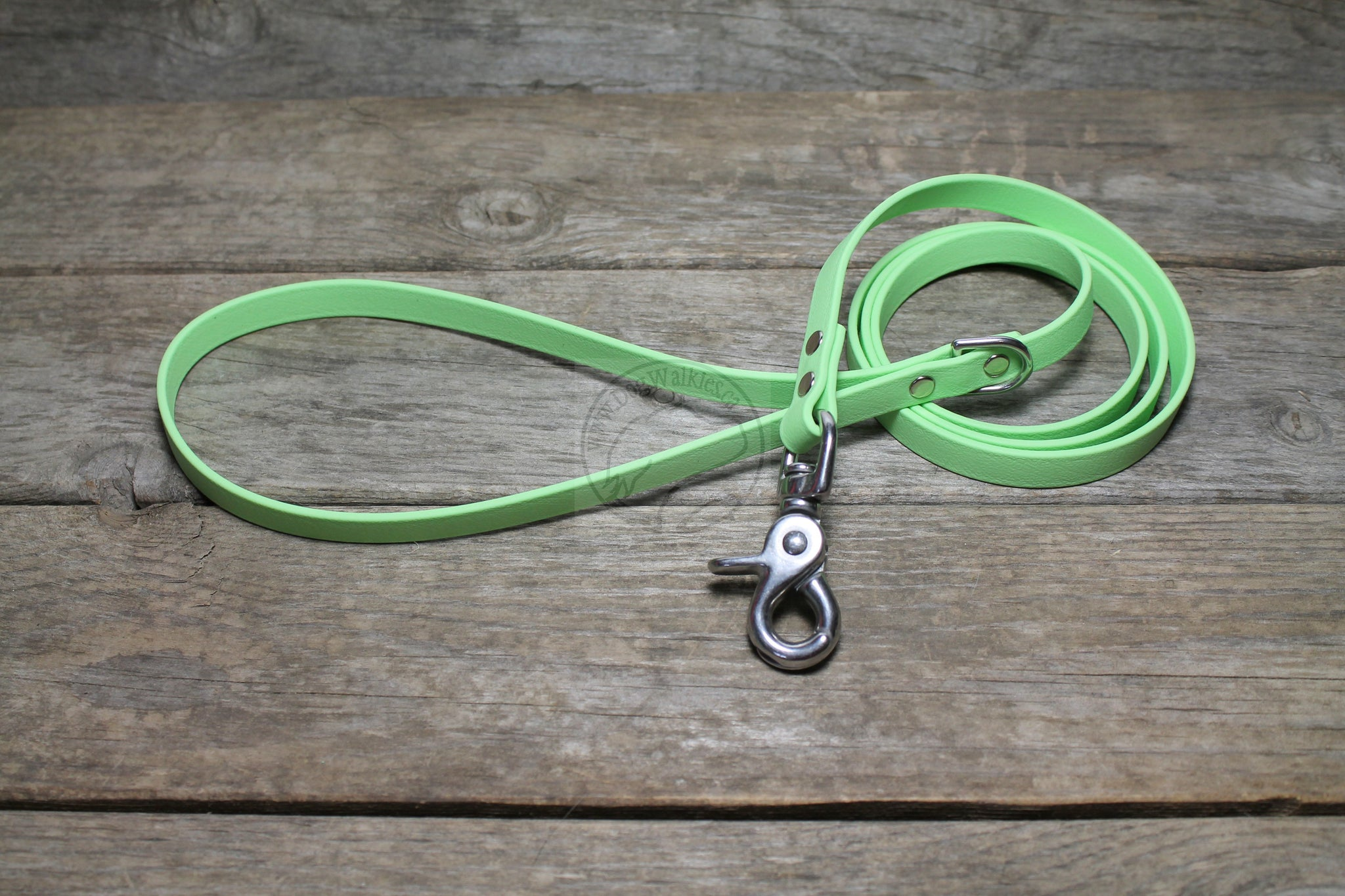 Pastel Mint Green Small Dog Leash