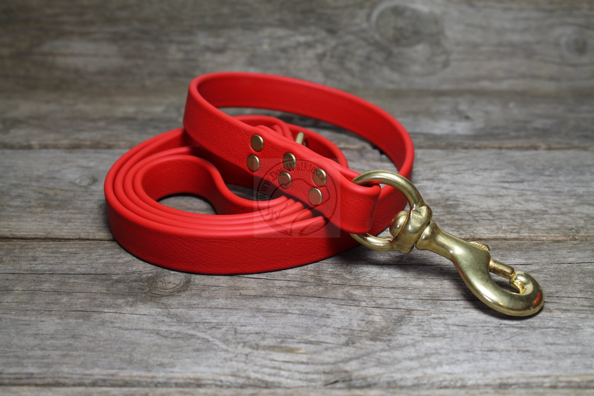 Poppy Red Biothane Large Dog Leash
