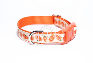 Pumpkin Fall dog collar