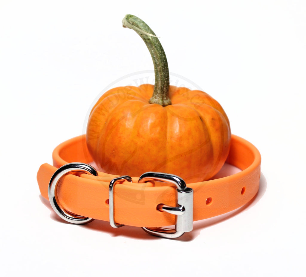 "*NEW* Pumpkin Orange Biothane Dog Collar - 3/4"" (19mm) wide"