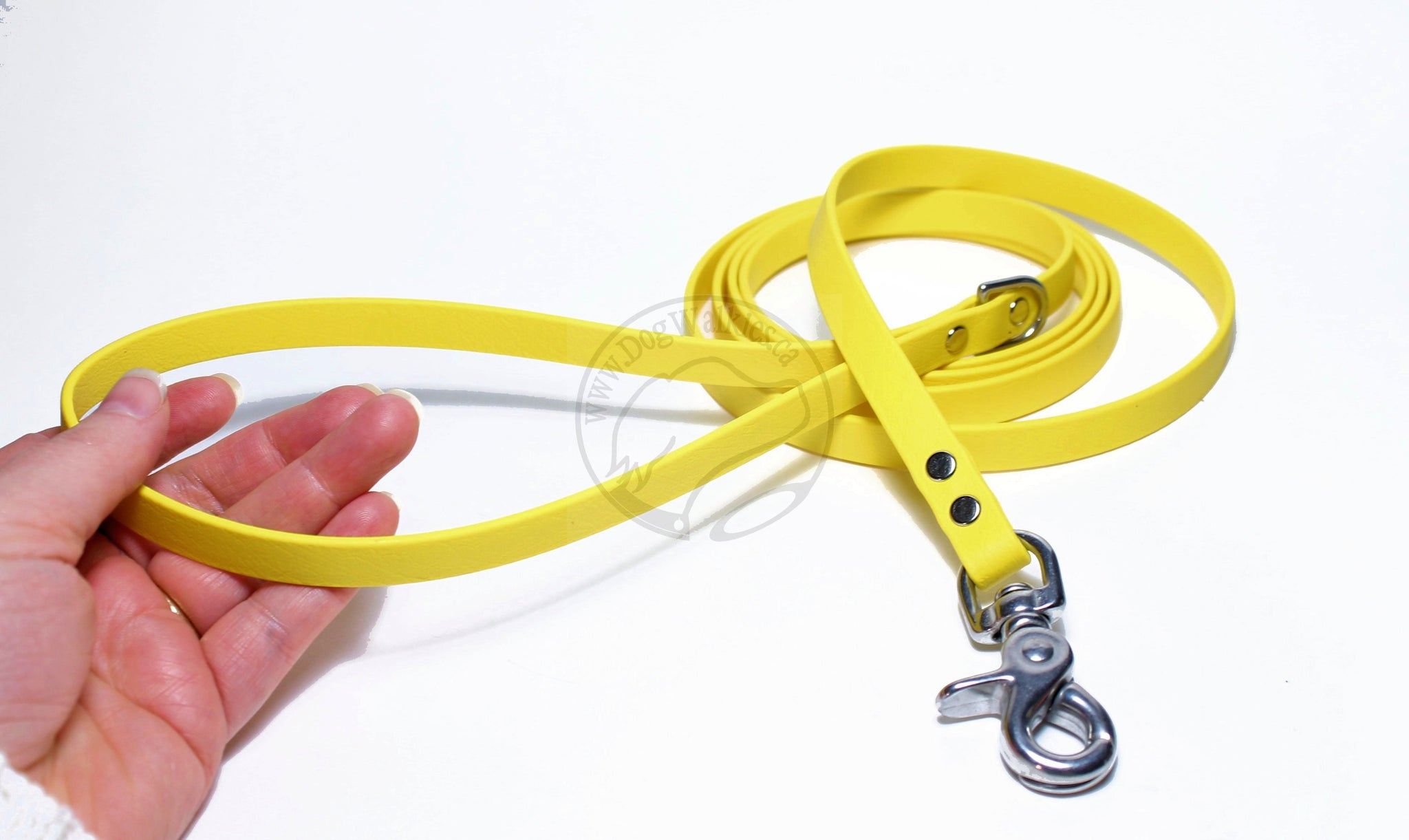 Sunflower Yellow Small Dog Leash