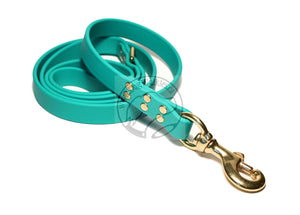 Teal Biothane Large Dog Leash