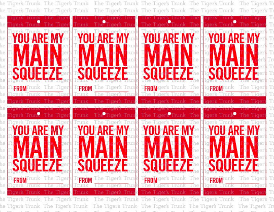 You Are My Main Squeeze Valentine Cards (digital file)