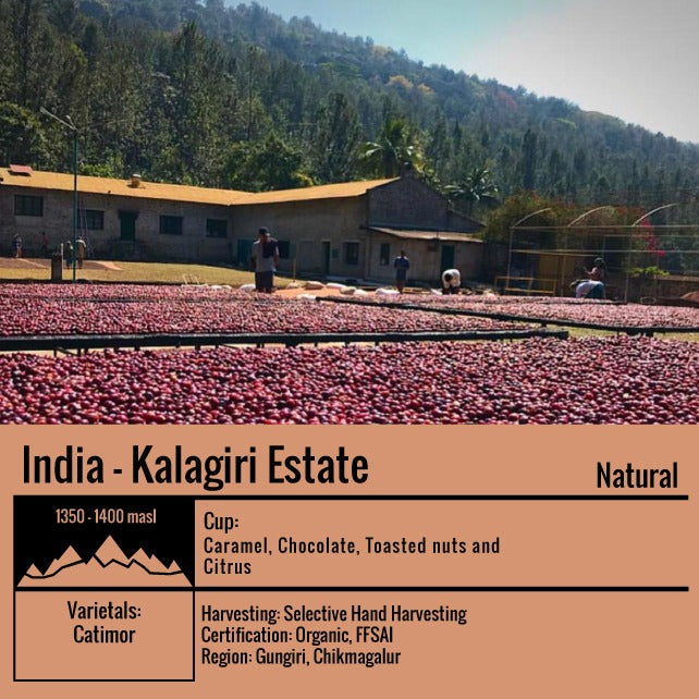 India -- Kalagiri Estate