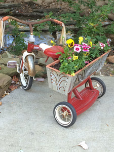 Little Flower Bike