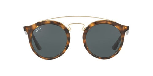Ray Ban - Gatsby Tortoise/Green Round Unisex Sunglasses - 49mm