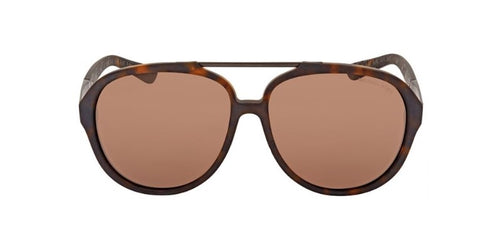 Michael Kors Auden Tortoise / Brown Lens Solid Polarized Sunglasses
