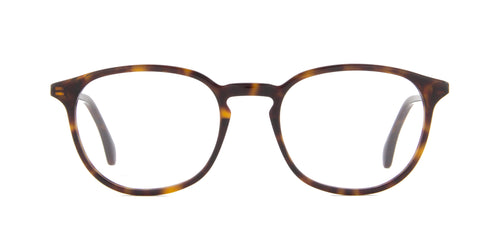 Gucci - GG0551O Havana Panthos Men Eyeglasses - 50mm