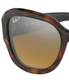 Ray-Ban RB4282CH BROWN P REPLACEMENT LENSES
