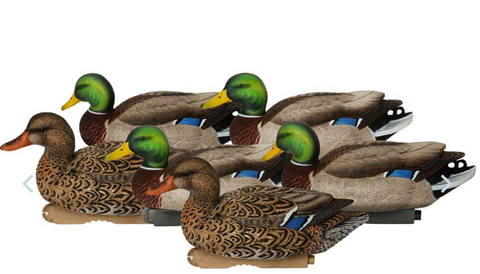 Avery GHG Pro-Grade XD Series Mallards, Active 6 Pack