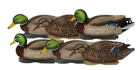 Avery GHG Pro-Grade XD Series Mallards, Feeder 6 Pack