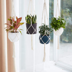 plant holder, hanging plant rope