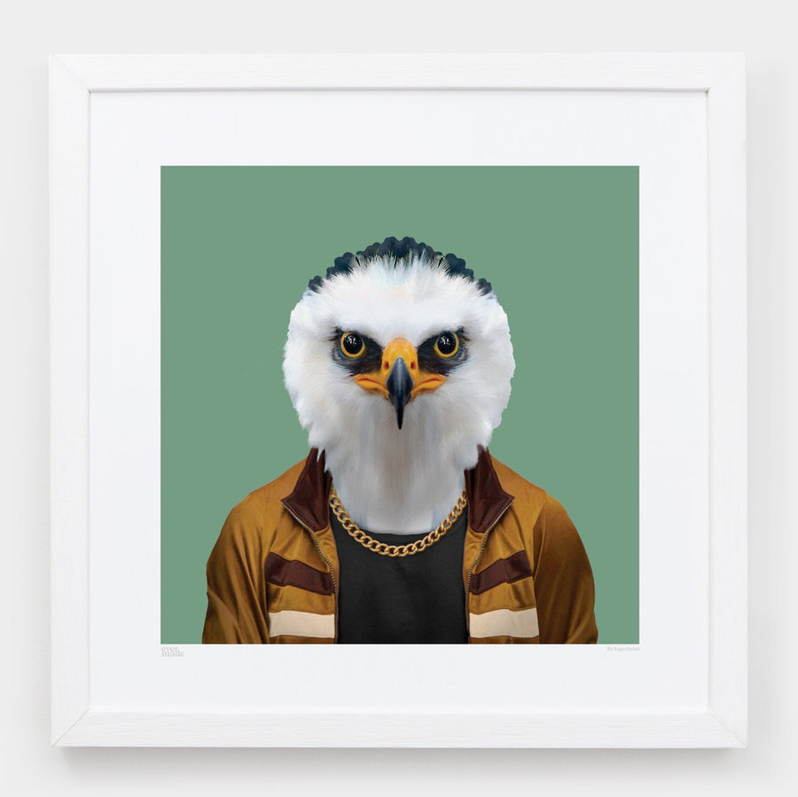 Yago Partal Matheus, the Hawk Eagle - Evermade