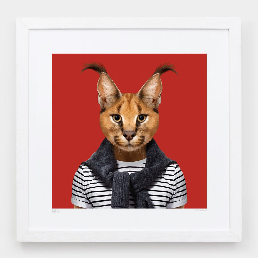 Yago Partal Àbakar, the Caracal - Evermade