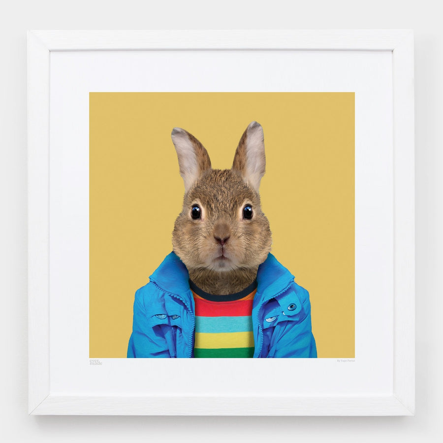 Yago Partal Pedro, the European Rabbit - Evermade