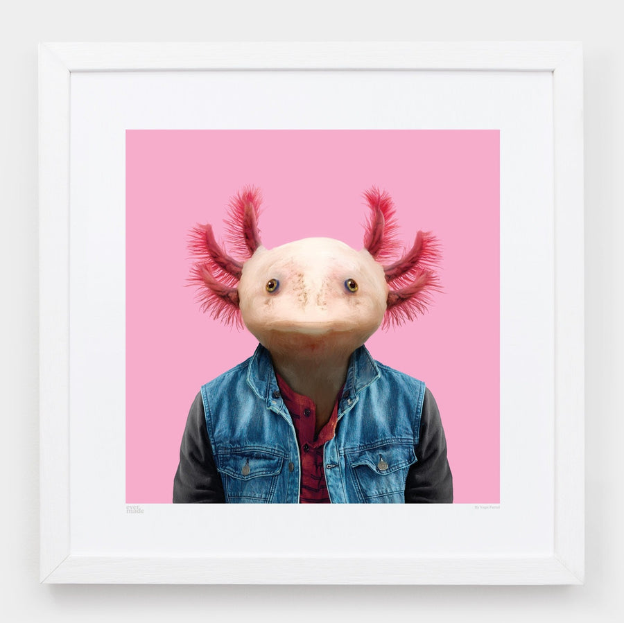 Yago Partal Ikal, the Axolotl - Evermade