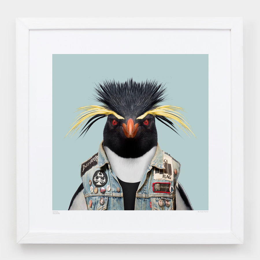 Tomas, the Southern Rockhopper Penguin - Evermade
