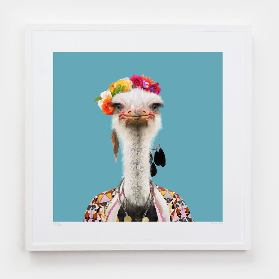 Yago Partal Amburo, the Somali Ostrich - Evermade