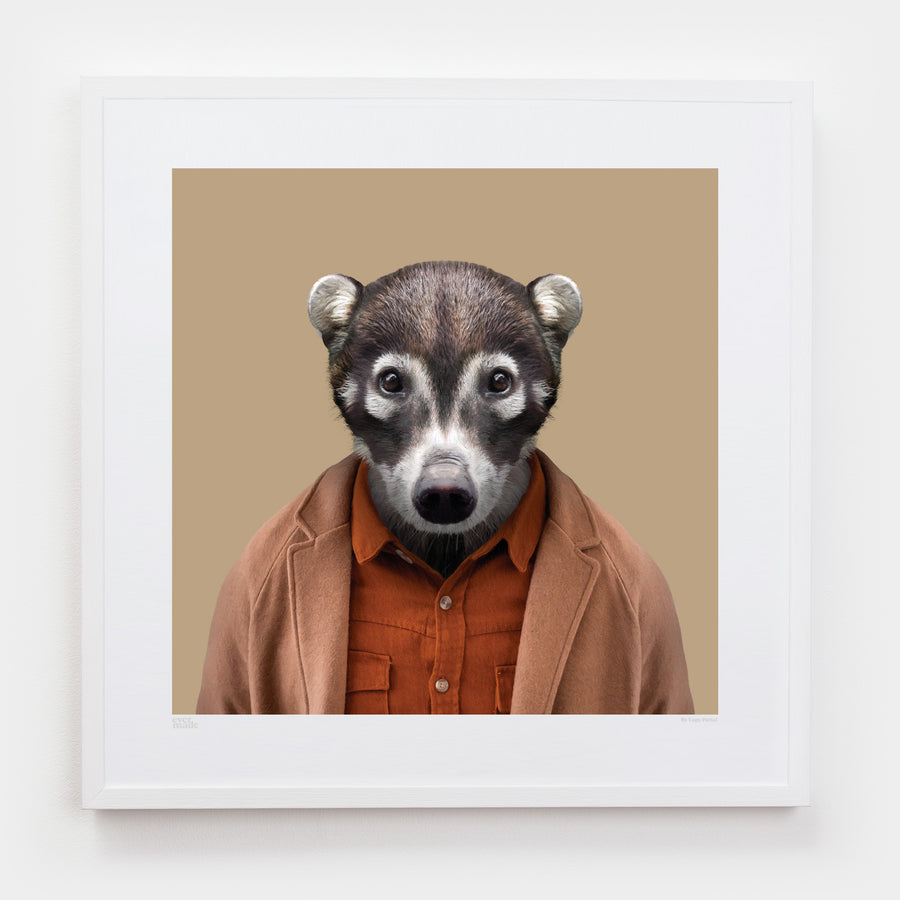 Yago Partal Samuel, the White-nosed Coati - Evermade