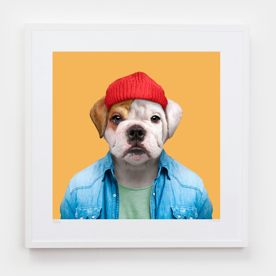 Yago Partal Charlie, the English Bulldog - Evermade