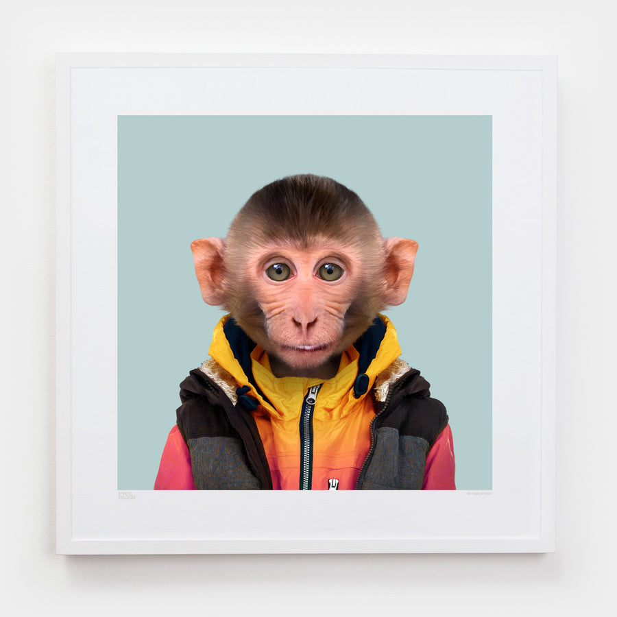 Yago Partal Yut, the Rhesus Macaque - Evermade