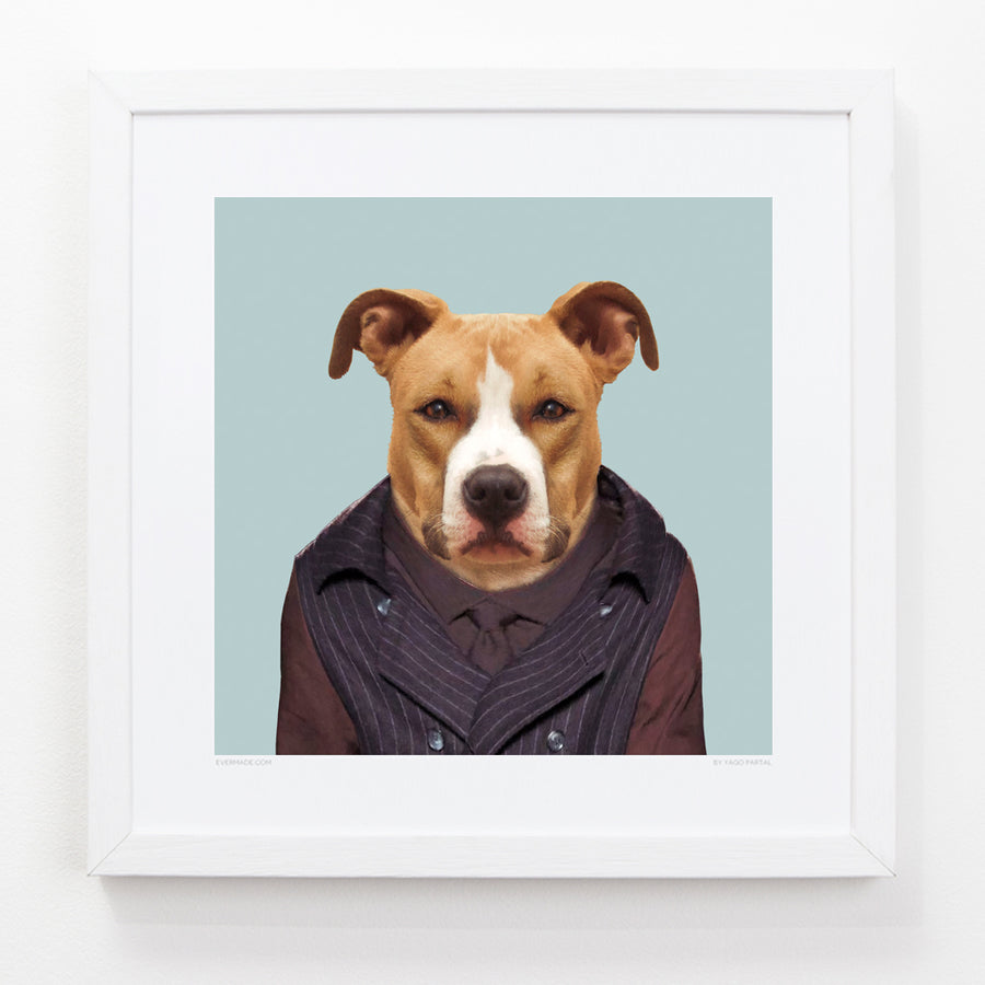 Yago Partal American Staffordshire Dog - Evermade