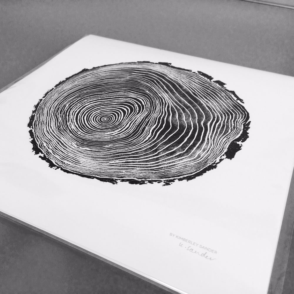 Scots Pine– Evermade