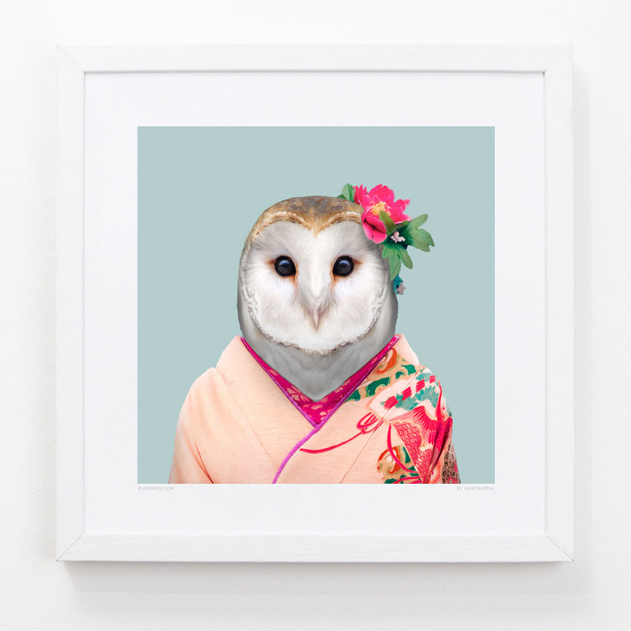 Isabella, the Barn Owl - Evermade