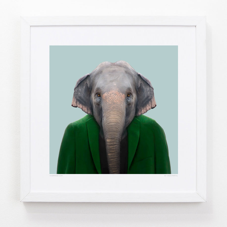 Yago Partal Bagus, the Asian Elephant - Evermade