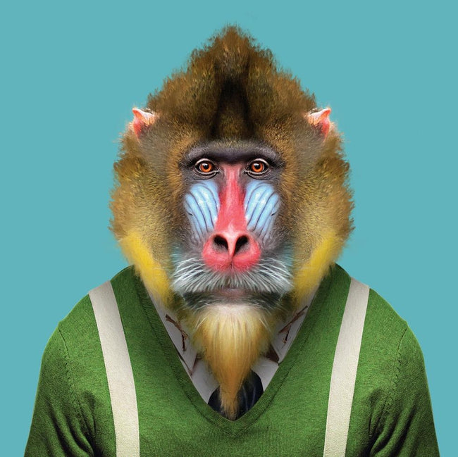 Yago Partal Beni, the Mandrill - Evermade