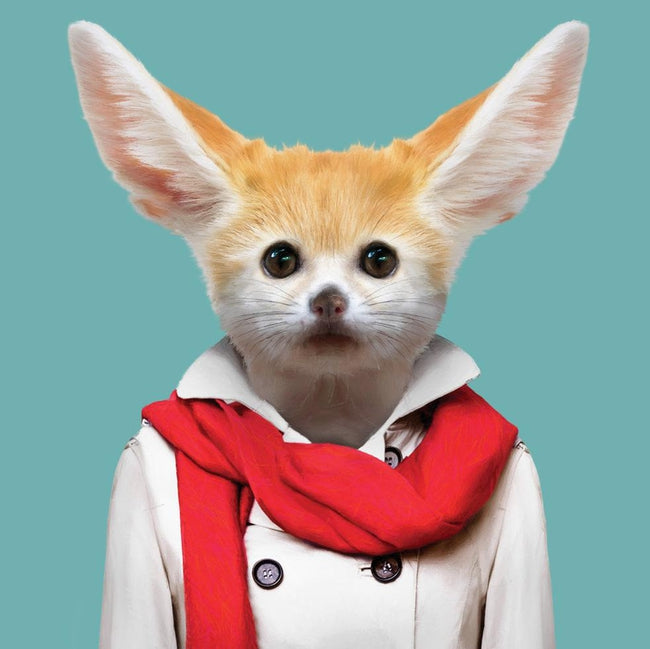 Yago Partal Nabila, the Fennec Fox - Evermade